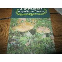 Книга грибы и грибные блюда