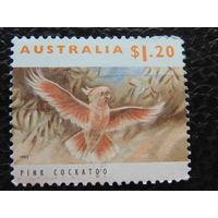 Австралия 1993г. Птицы.