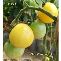 Семена томата Dr. Carolyn (Доктор Керолин) (черри)