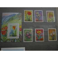 Марки - Узбекистан, 1993 - флора, цветы, блок и 6 марок