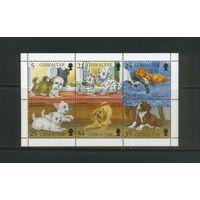 Собаки Домашние животные Фауна 1996 Гибралтар MNH 6м зуб лист полная серия  ЛОТ РАСПРОДАЖА