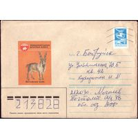 1985 год Винторогий козлина