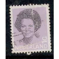 Марка Нидерланды 1с стандарты