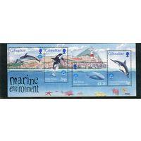 Гибралтар. Международный год охраны природы океана, блок