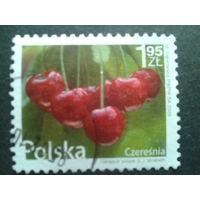 Польша 2009 стандарт вишни