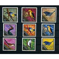 Гвинея 1971г. птицы, 9м.