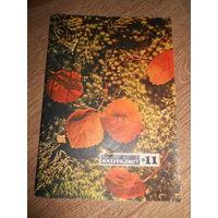 Журнал Юный натуралист 1971 #11