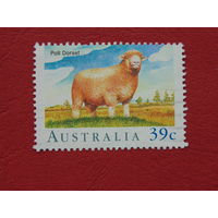 Австралия 1998г. Фауна.