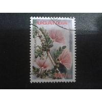 Уганда 2005 цветы