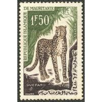 Кошки. Мавритания 1963. Гепард. Марка из серии. Чистая