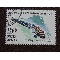 Мадагаскар 1993г. Фауна.