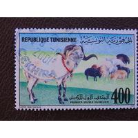 Тунис 1989г. Фауна.