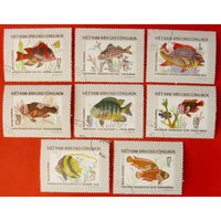 Вьетнам. Рыбы. ( 8 марок ) 1976 года.
