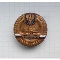 """Знак """"Отличный водитель"""" 3 класса (бронза) ВС Польши"""
