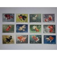 Китай 1960 Фауна. Золотые рыбки. Полная серия 12 чистых марок