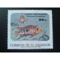 Сальвадор 1985 рыба