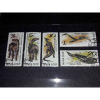 СССР 1990 Фауна Динозавры Ископаемые животные полная серия 5 марок