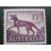Австралия 1961 тасманийский тигр