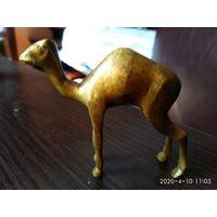 """Статуэтка из бронзы""""Верблюд""""Иордания."""