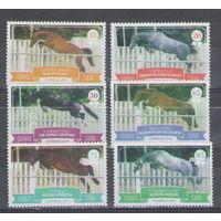 Куба Лошади Конный спорт 2014 год чистая полная серия из 6-ти марок и беззубцового блока