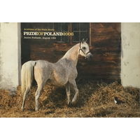 PRIDE OF POLAND – Arabian Horse Days, 2006