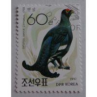 Корея.1992.тетерев