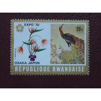 Руанда 1970г. Птицы.