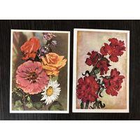 Открытки Цветы 1958 год Цена за все подписаны