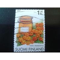 Финляндия 2005 ягоды