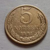 5 копеек СССР 1981 г.