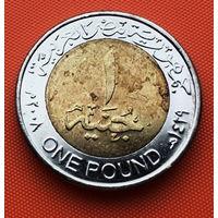 121-06 Египет, 1 фунт 2008 г.