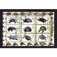 Руанда - CTO - черепахи - океан - фауна - зубчатый - 2012