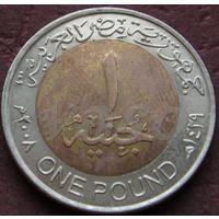 328: 1 фунт 2008 Египет