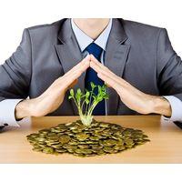 Курсовая - Институциональные аспекты организации малого бизнеса - Институциональная экономика