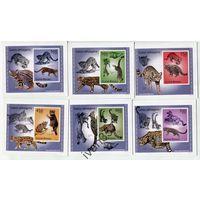 Комплект 2010 Фауна Хищные кошки Гвинея-Биссау КАРТОН