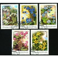 Цветы СССР 1983 год серия из 5 марок