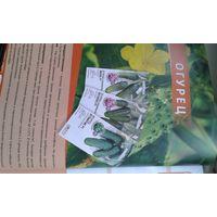 Семена огурец голландия