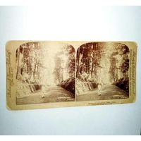 Стерео открытка 19век.1896г.Авеню .Никко Япония.