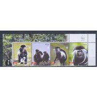 [1786] Ангола 2004. Фауна.Обезьяна.WWF.