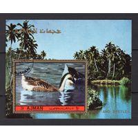 PL36_1 - 1 шт. Аджман - CTO - птицы - гуси - фауна - зубчатый - 1972