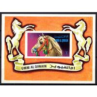 1972 ОАЭ. Умм-эль-Кайвайн. Лошади