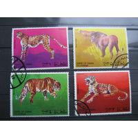 Марки - фауна, Оман, дикие кошки