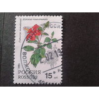 Россия 1993 цветы