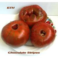 Семена томата Chocolate Stripes