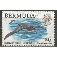 Бермуды. Птица Тайфунник. 1978г. Mi#368.