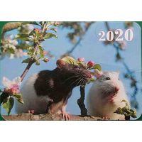 Календарик Крысы