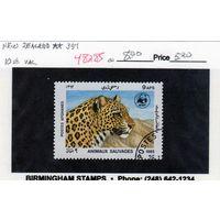 Афганистан. Леопард. 1985.