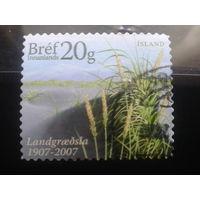 Исландия 2007 ботанический сад