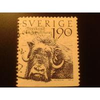 Швеция 1984 бык
