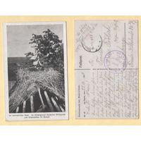 Брэст-Літоўск / Brest-Litowsk. Ракітна. Пошта 22.11.1917